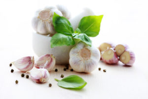 is garlic toxic in dogs?