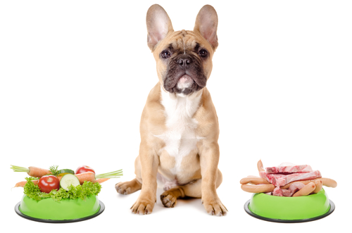 dog Food vegetables or meat